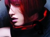 JOICO TREND COLLECTION 2009: MINIMUM / MAXIMUM