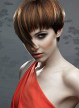 Beverly C Freedom Collection 2009 dla Goldwell