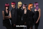 GOLDWELL BRAND TRAILER kaleidoscope